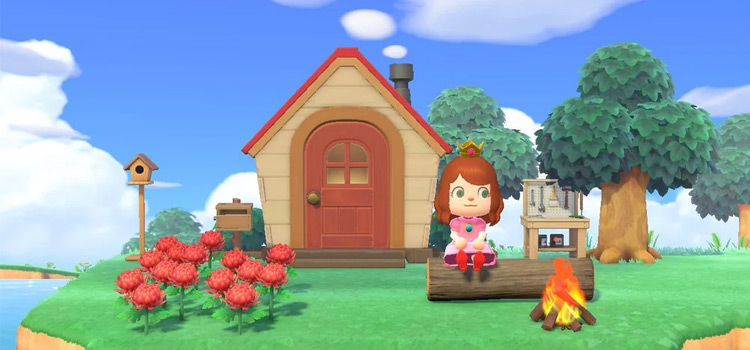 New Home Build in Animal Crossing: New Horizons