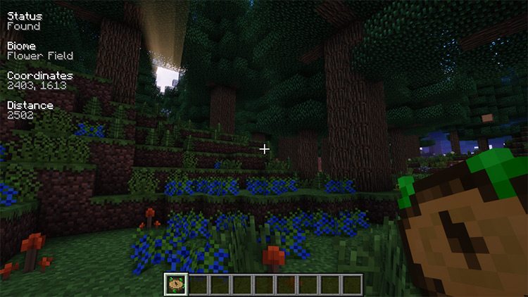 Nature's Compass Mod for Minecraft