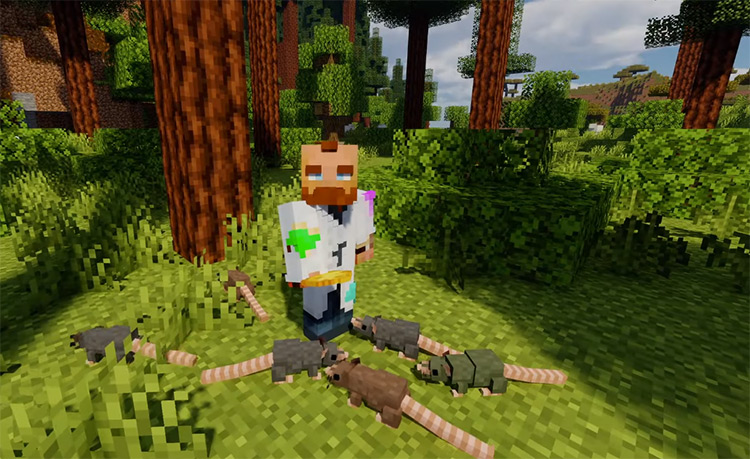 Rats in Minecraft / Mod Preview