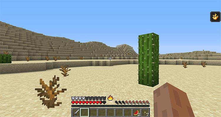 EnvironmentZ Desert Area / Minecraft Mod