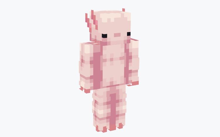 Full Axlolotl Character Design / Minecraft Skin