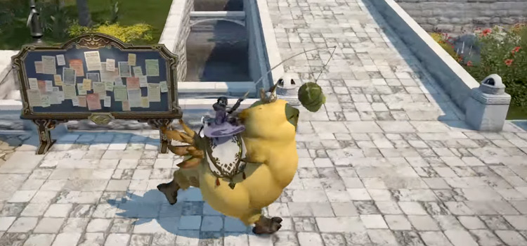 Rare Parade Chocobo in-game screenshot from FFXIV