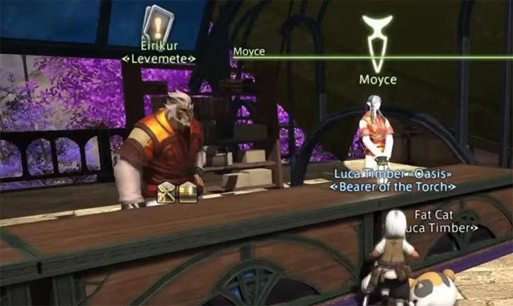 Levemete NPC character screenshot / FFXIV
