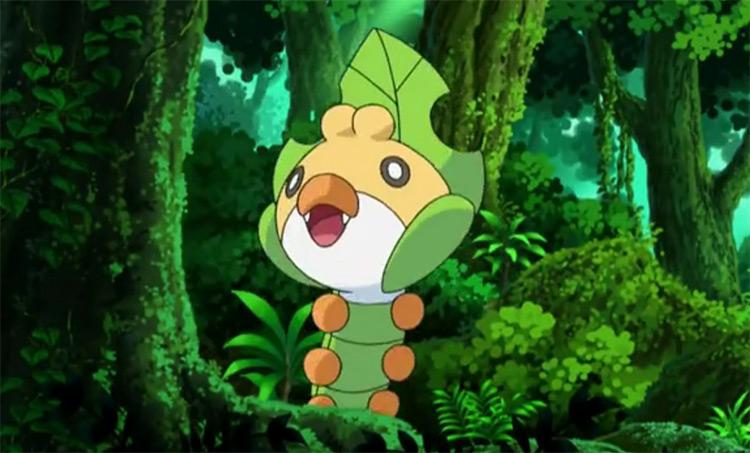 Sewaddle Pokemon anime screenshot