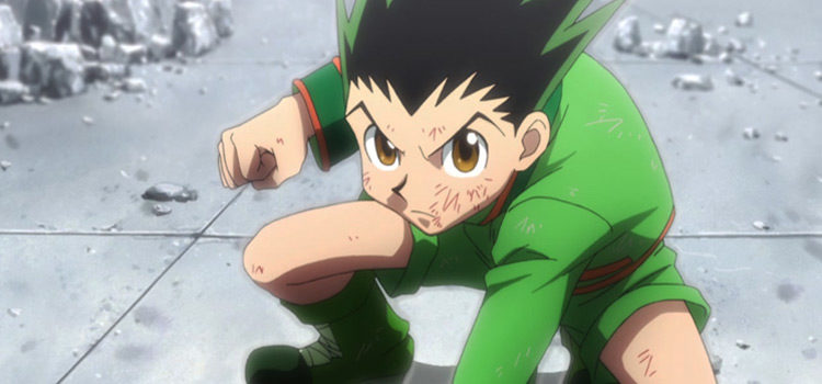 12 Anime Characters That Could Beat Gon