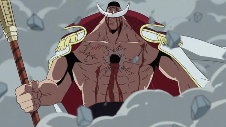 Whitebeard in One Piece anime