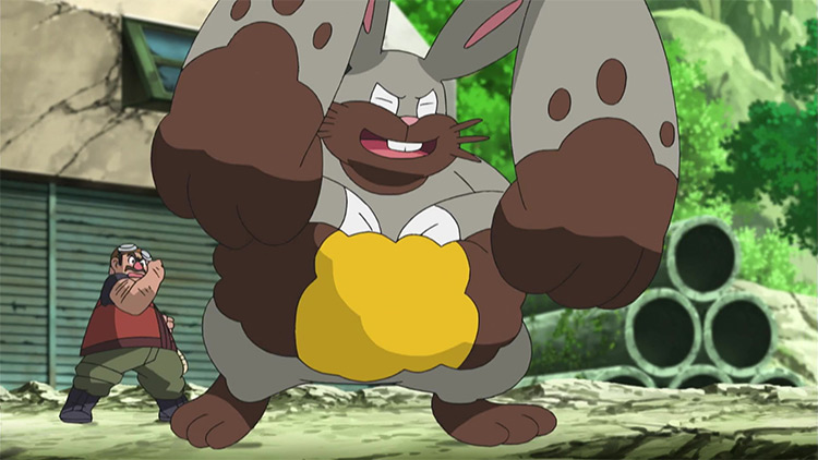 Diggersby Pokemon in the anime