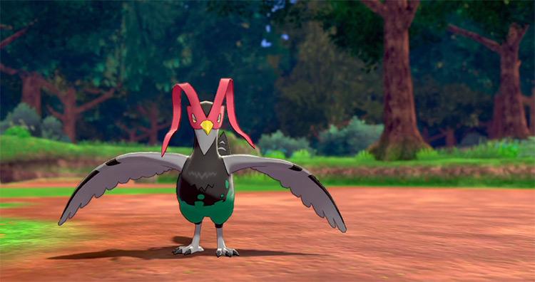 Unfezant in Pokémon Sword and Shield