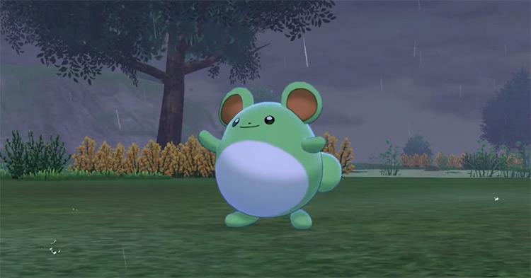 Shiny Marill in Pokémon Sword and Shield