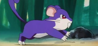 Rattata from the Pokemon anime
