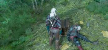 Witcher 3 in a field - Screenshot