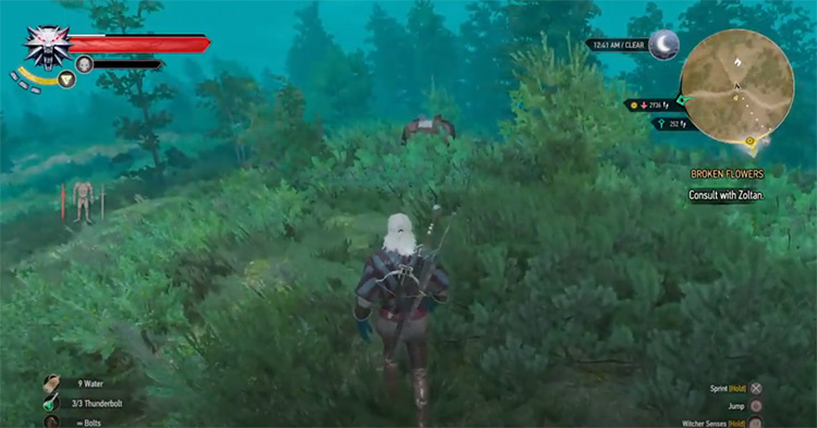 Reliever Decoction Witcher 3 Screenshot