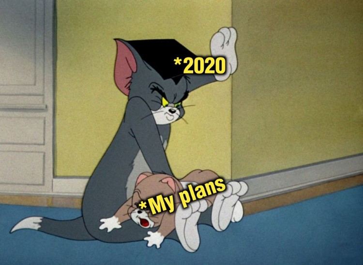 My plans Tom meme