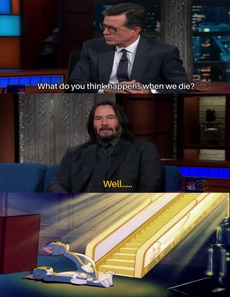 Tom dead meme
