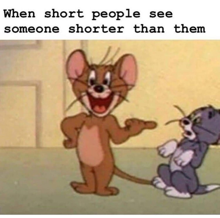 Tom and Jerry shorter meme