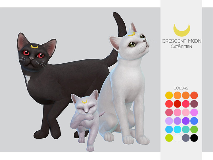 Kitten Cresent Moon for pets - Sims 4 CC