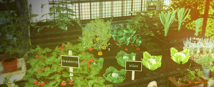 Little Veggie Garden Conversions by yumesims CC for Sims 4