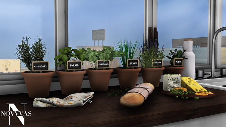 Potted Herb Garden by Novvvas Sims 4 CC