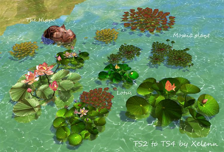 TS2 to TS4 Plants & Flowers Mega Pack by Xelenn Sims 4