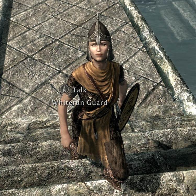 Diverse Guards Mod for Skyrim