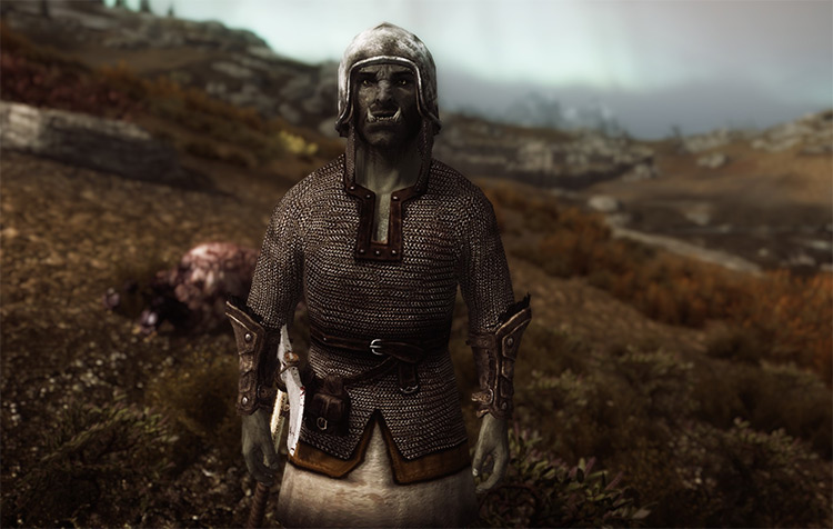 Viking Chainmail Armor Screenshot