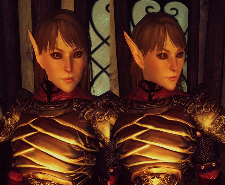 Oblivion Character Overhaul Mod