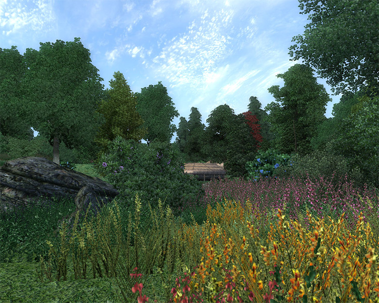 Enhanced Vegetation Mod for Oblivion