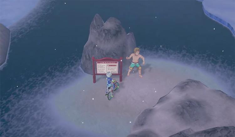 Pokémon Sword & Shield Route 9 Screenshot