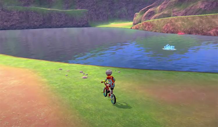 Wild Area in Pokémon Sword & Shield screenshot