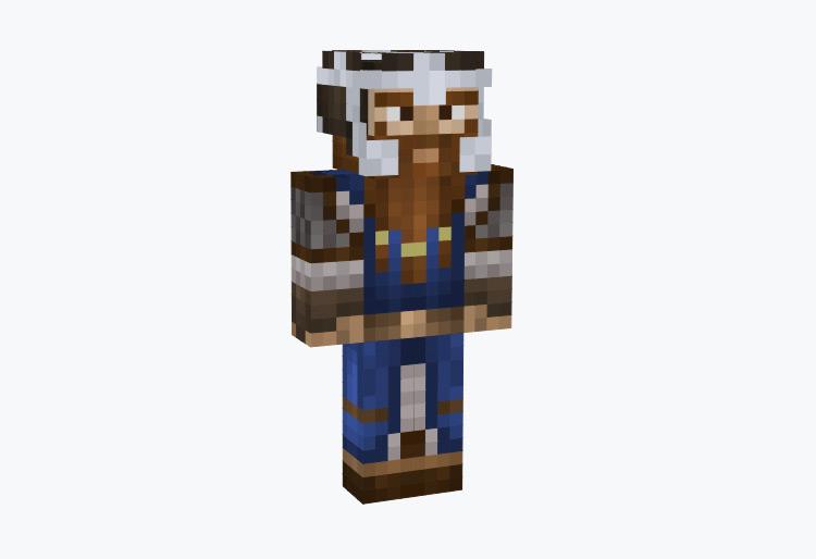 Viking Nordic Dwarf / Minecraft Skin