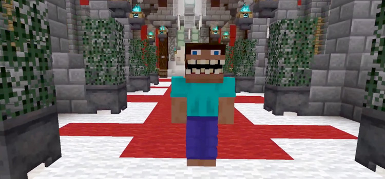 Weird Steve Face Skin in Minecraft