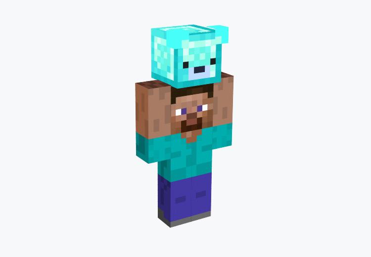 Mini-Steve Character / Minecraft Skin