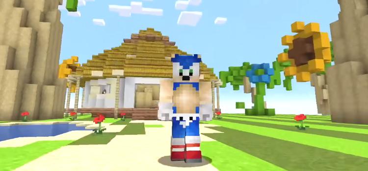 Sonic the Hedgehog Skin in Minecraft