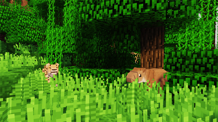 Zoo & Wild Animals Rebuilt / Minecraft Mod Preview