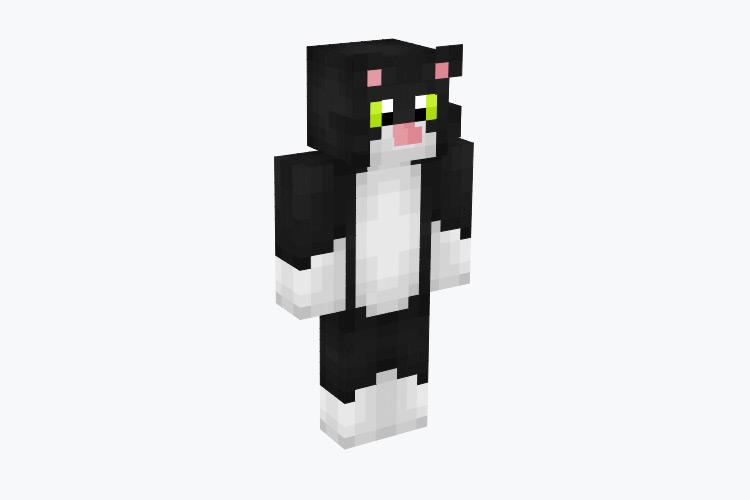 Black & White Tuxedo Cat / Minecraft Skin