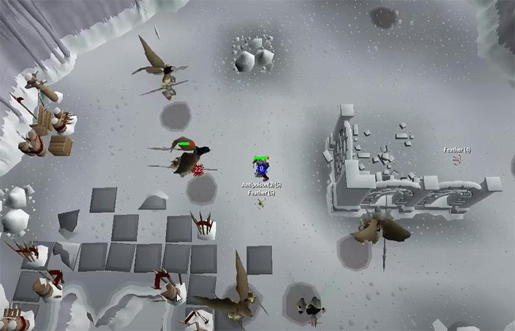 Aviansies Battle in OSRS screenshot