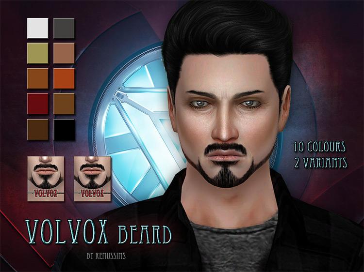 Volvox Beard / TS4 CC