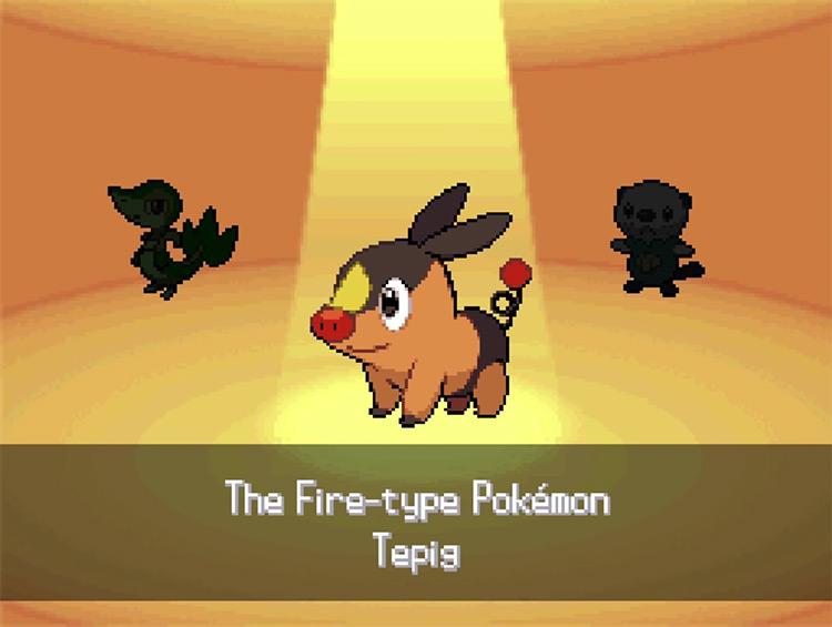 Pokemon Black and White Starters screenshot