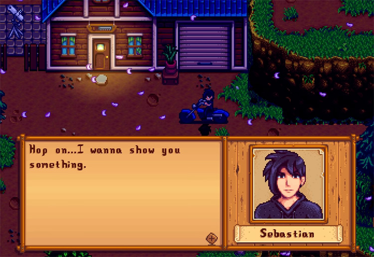 Sebastian Stardew Valley gameplay