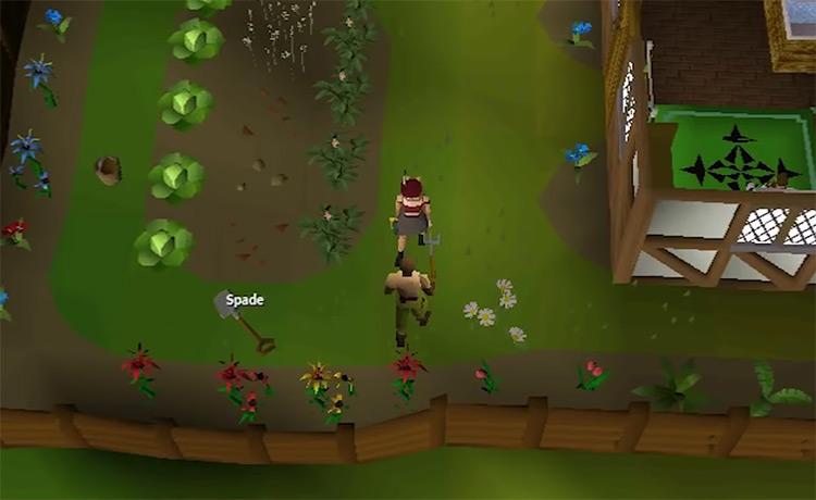 OSRS Plague City Quest gameplay screenshot