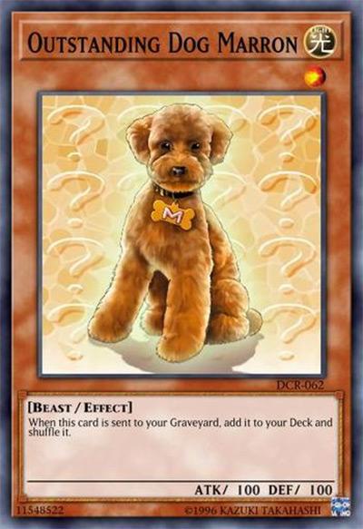 Outstanding Dog Marron Yu-Gi-Oh! Card