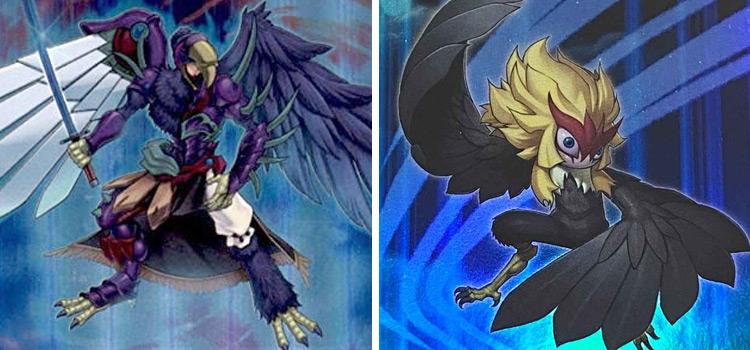 Blackwing Raikiri & Kalut Monsters in YuGiOh