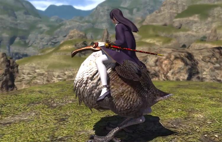 Dodo Bird Mount / FFXIV