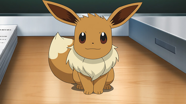 Eevee from Pokémon anime