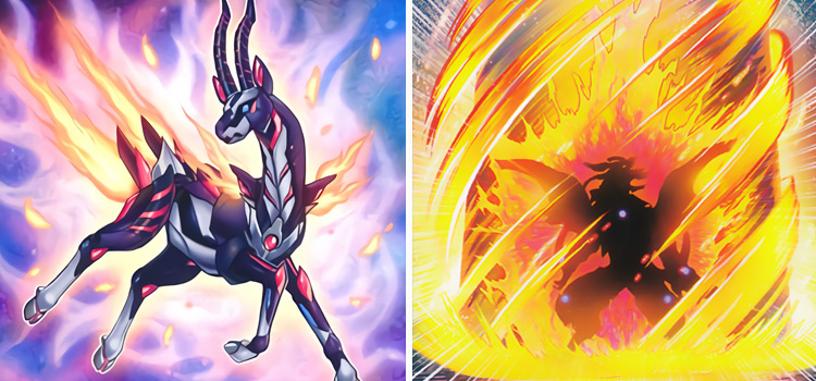 Salamangreat Gazelle & Will Of The Salamangreat YGO Cards