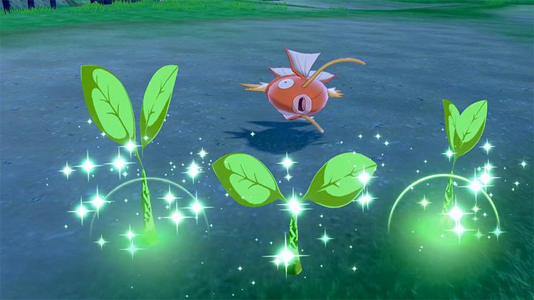 Leech Seed Pokémon SWSH move