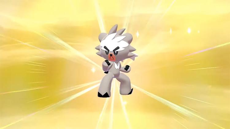 Shiny Kubfu in Pokémon Sword and Shield