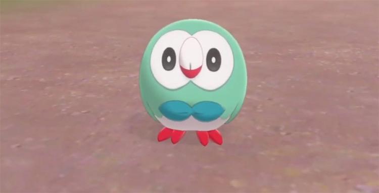 Shiny Rowlet in Pokémon Shield
