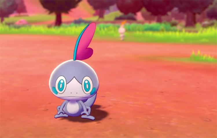 Shiny Sobble in Pokémon Sword (Camp)