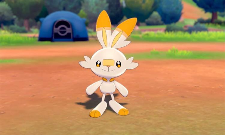 Shiny Scorbunny in Pokémon SW/SH camp